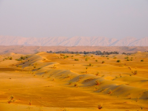 Sand Dunes, Outskirts of Dubai