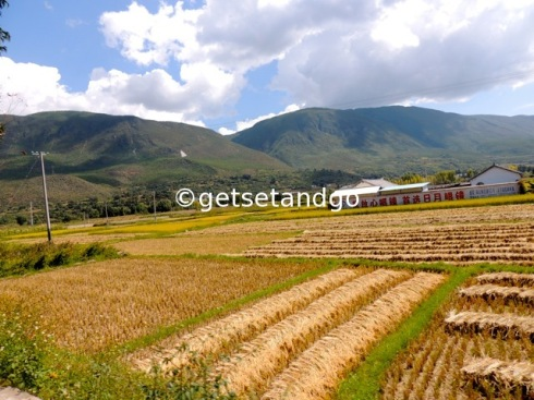 Farming still done with traditional methods, Yunnan, China